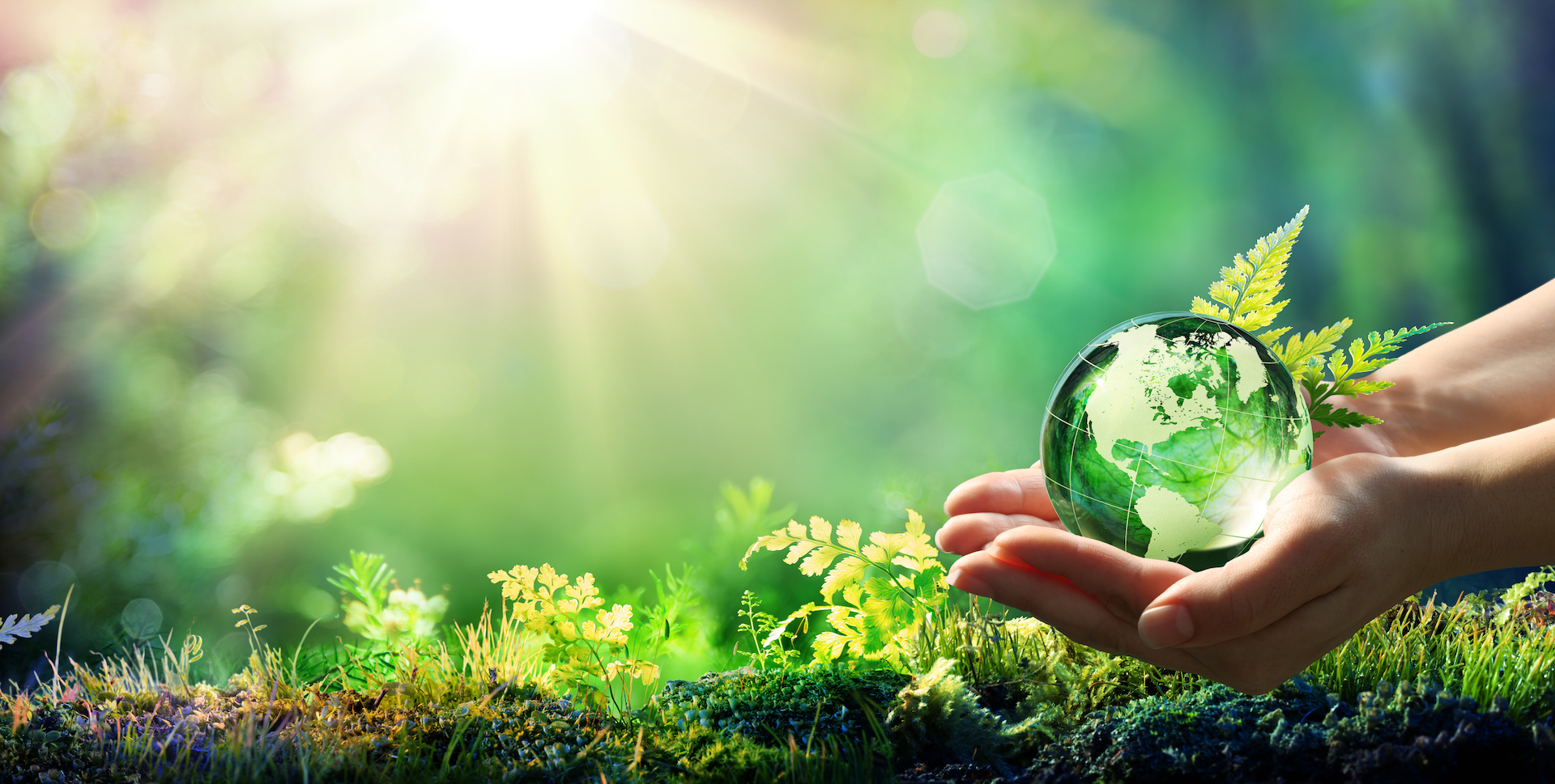 eine Hand hält einen Glas Globus